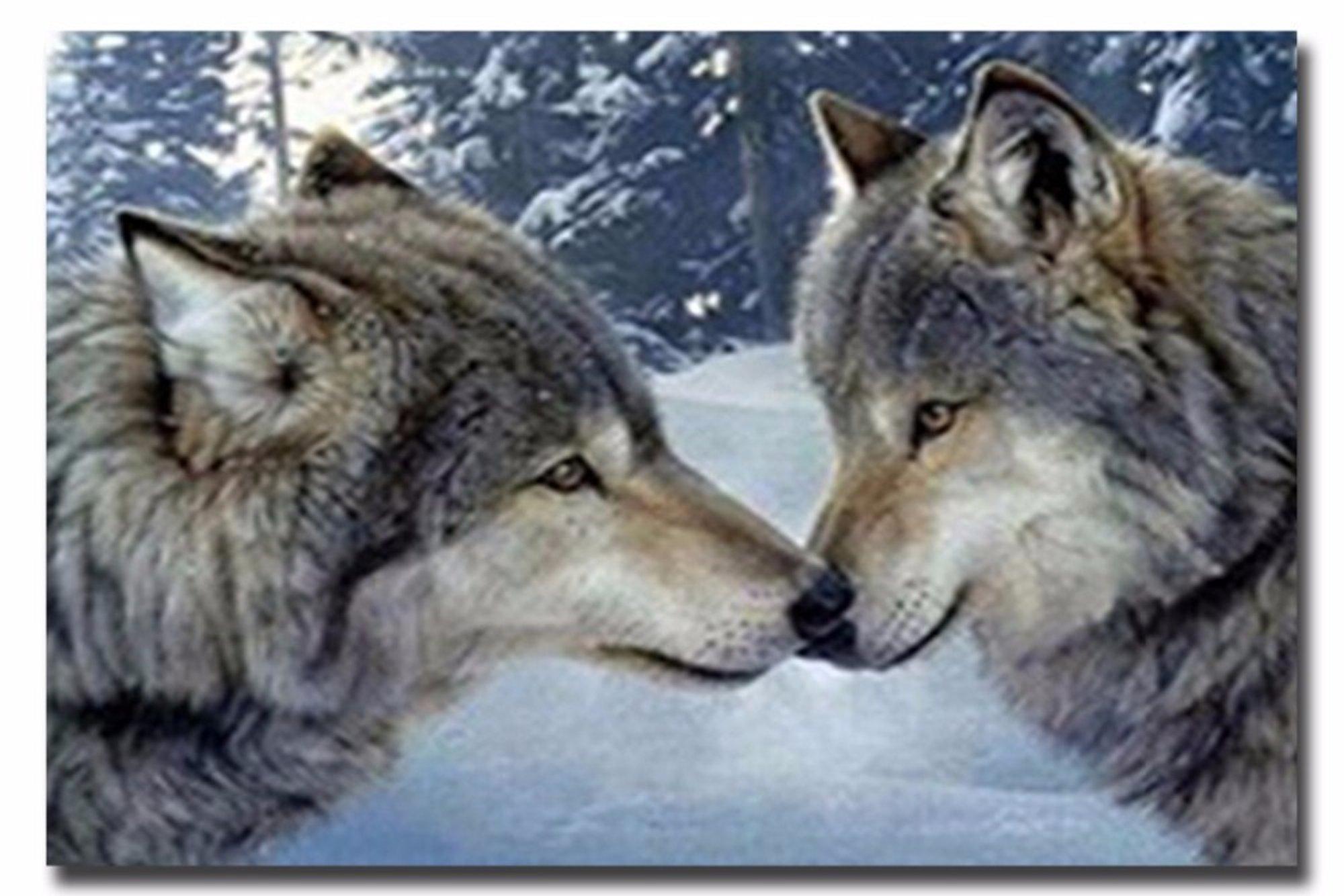 5D DIY Diamond Painting Wolf (#04)