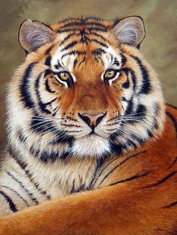 5D DIY Diamond Painting Tiger (#14)