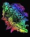 Artfoil Rainbow Butterfly 0541