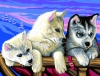 Senior Painting by Numbers Huskies 1036