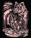 Artfoil Copper Tiger and Cub 0610