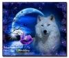 5D DIY Diamond Painting Wolf (#16)
