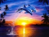 5D DIY Diamond Painting Dolphin (#05)