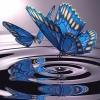 5D DIY Diamond Painting Butterfly (#05)
